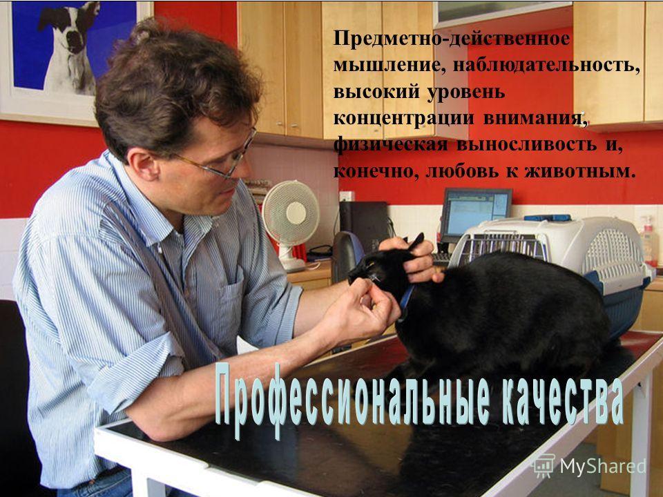 Предметно-действенное мышление, наблюдательность, высокий уровень концентрации внимания, физическая выносливость и, конечно, любовь к животным.