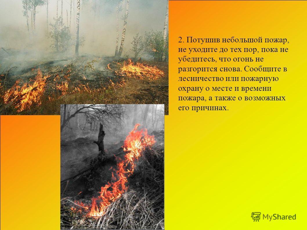 2. Потушив небольшой пожар, не уходите до тех пор, пока не убедитесь, что огонь не разгорится снова. Сообщите в лесничество или пожарную охрану о месте и времени пожара, а также о возможных его причинах.