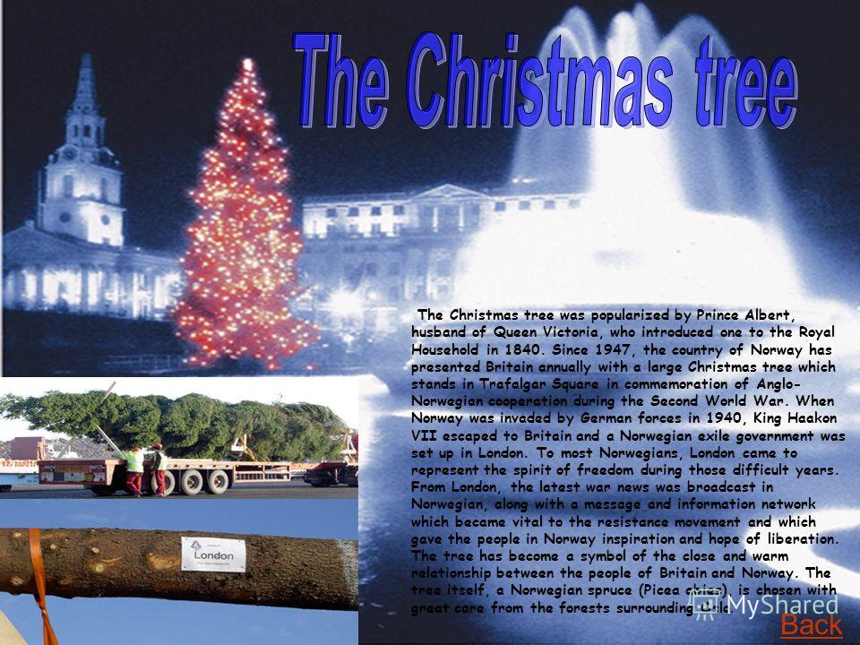 The Christmas tree was popularized by Prince Albert, husband of Queen Victoria, who introduced one to the Royal Household in 1840. Since 1947, the country of Norway has presented Britain annually with a large Christmas tree which stands in Trafalgar