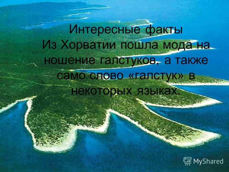 Интересные факты Из Хорватии пошла мода на ношение галстуков, а также само слово «галстук» в некоторых языках.