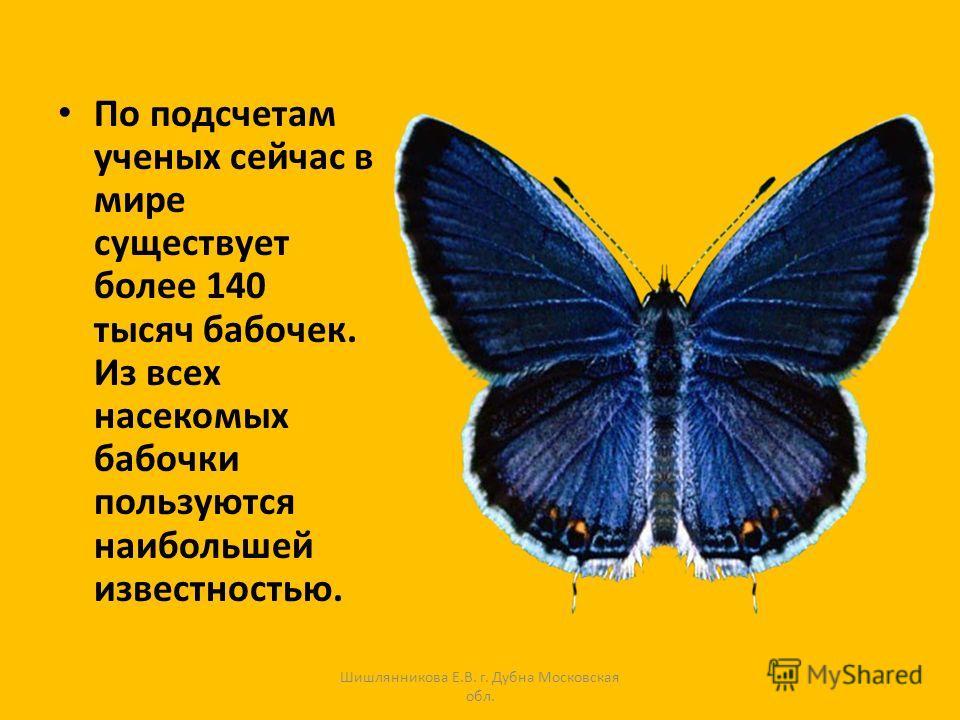 По подсчетам ученых сейчас в мире существует более 140 тысяч бабочек. Из всех насекомых бабочки пользуются наибольшей известностью. Шишлянникова Е.В. г. Дубна Московская обл.