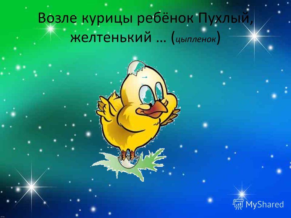 Возле курицы ребёнок Пухлый, желтенький … ( цыпленок )