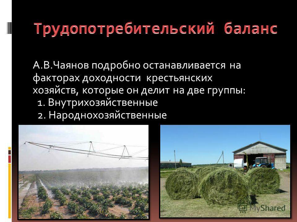 А.В.Чаянов подробно останавливается на факторах доходности крестьянских хозяйств, которые он делит на две группы: 1. Внутрихозяйственные 2. Народнохозяйственные
