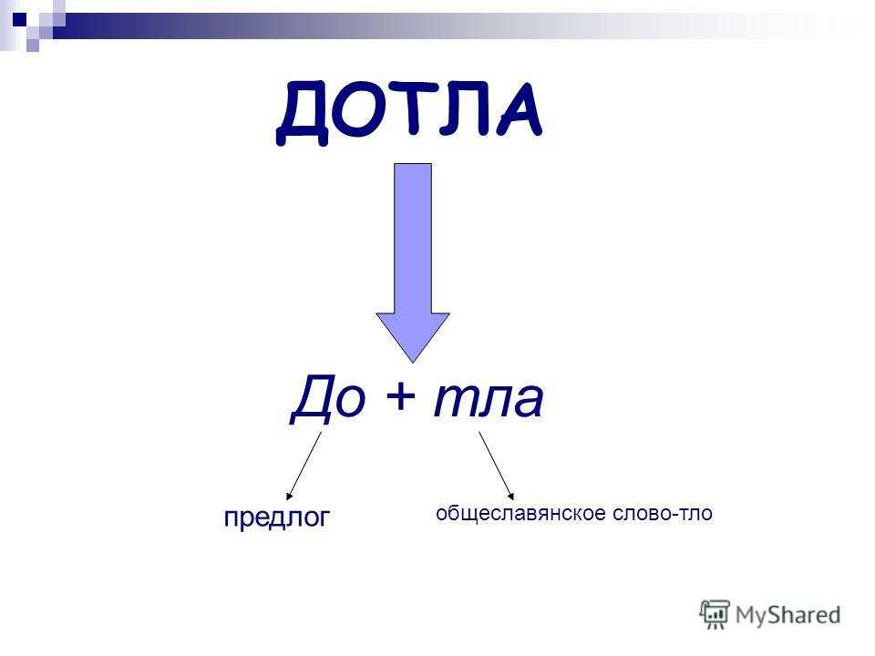 ДОТЛА До + тла предлог общеславянское слово-тло