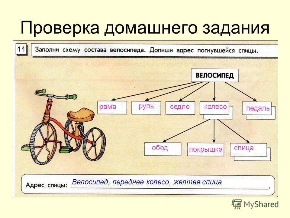 Проверка домашнего задания рама руль седлоколесо педаль обод покрышка спица Велосипед, переднее колесо, желтая спица