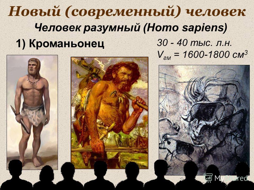Новый (современный) человек 30 - 40 тыс. л.н. V гм = 1600-1800 см 3 1) Кроманьонец Человек разумный (Homo sapiens)
