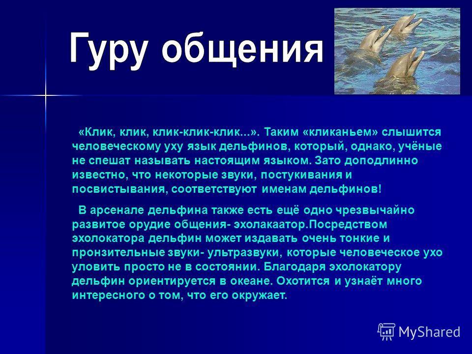 «Клик, клик, клик-клик-клик...». Таким «кликаньем» слышится человеческому уху язык дельфинов, который, однако, учёные не спешат называть настоящим языком. Зато доподлинно известно, что некоторые звуки, постукивания и посвистывания, соответствуют имен