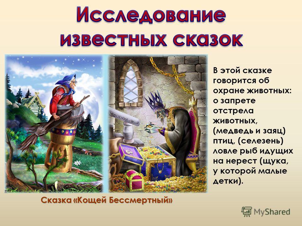 Сказка «Кощей Бессмертный» В этой сказке говорится об охране животных: о запрете отстрела животных, (медведь и заяц) птиц, (селезень) ловле рыб идущих на нерест (щука, у которой малые детки).