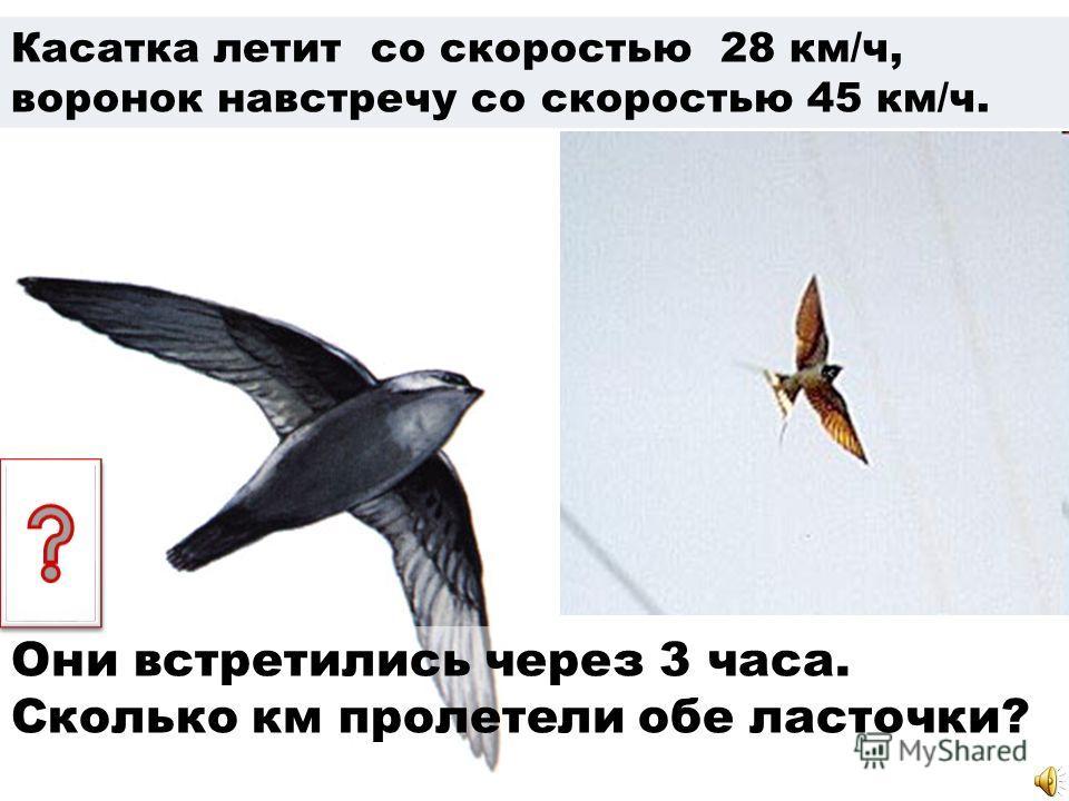 Касатка летит со скоростью 28 км/ч, воронок навстречу со скоростью 45 км/ч. Они встретились через 3 часа. Сколько км пролетели обе ласточки?