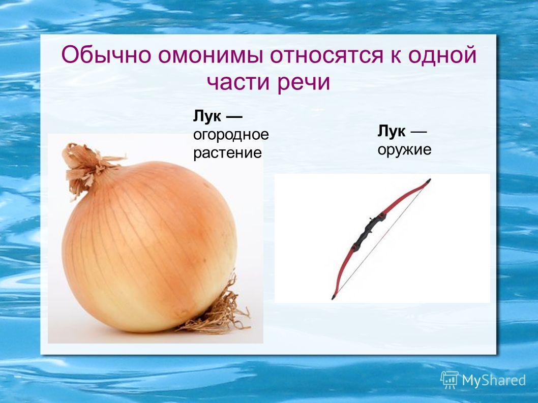 Обычно омонимы относятся к одной части речи Лук огородное растение Лук оружие