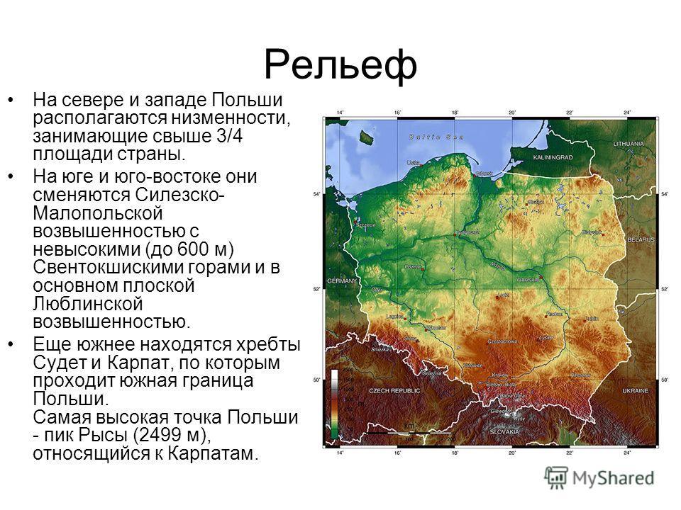 Рельеф На севере и западе Польши располагаются низменности, занимающие свыше 3/4 площади страны. На юге и юго-востоке они сменяются Силезско- Малопольской возвышенностью с невысокими (до 600 м) Свентокшискими горами и в основном плоской Люблинской во