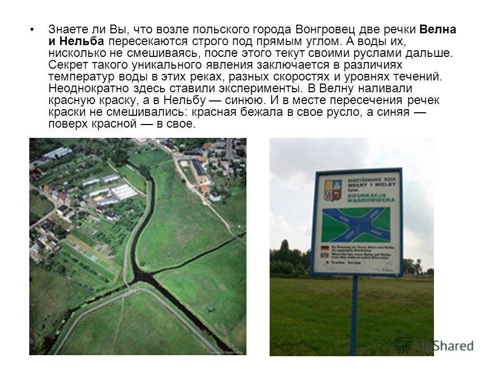 Знаете ли Вы, что возле польского города Вонгровец две речки Велна и Нельба пересекаются строго под прямым углом. А воды их, нисколько не смешиваясь, после этого текут своими руслами дальше. Секрет такого уникального явления заключается в различиях т