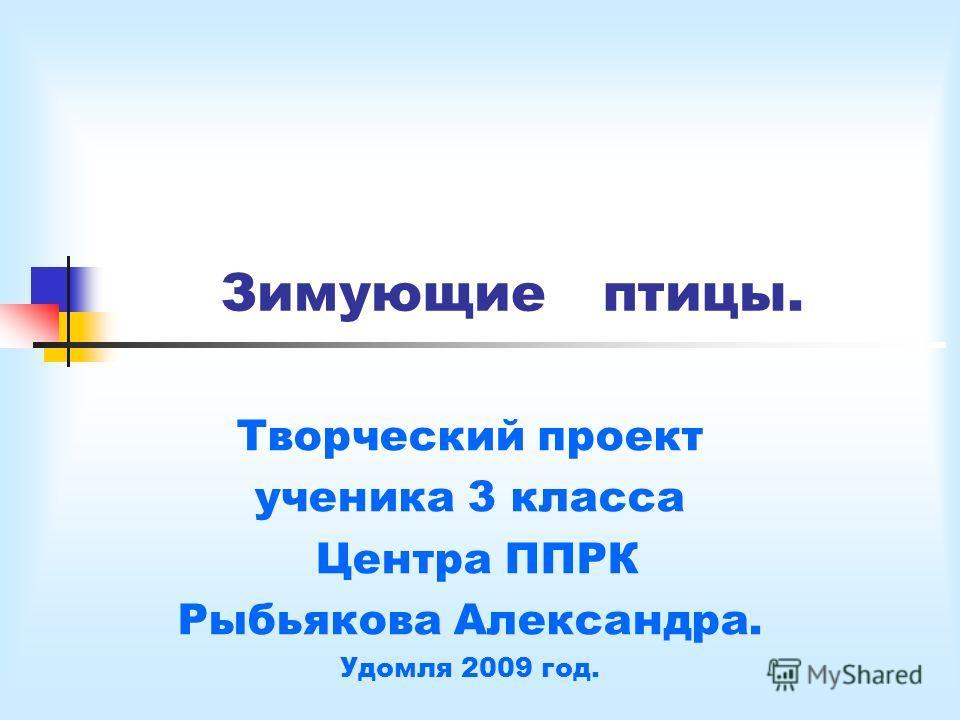 Зимующие птицы. Творческий проект ученика 3 класса Центра ППРК Рыбьякова Александра. Удомля 2009 год.