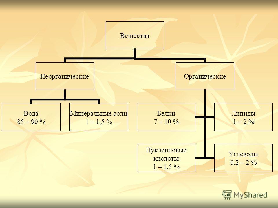 Вещества Неорганические Вода 85 – 90 % Минеральные соли 1 – 1,5 % Органические Белки 7 – 10 % Липиды 1 – 2 % Нуклеиновые кислоты 1 – 1,5 % Углеводы 0,2 – 2 %