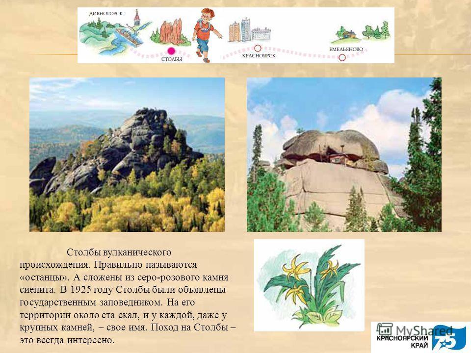 Столбы вулканического происхождения. Правильно называются «останцы». А сложены из серо-розового камня сиенита. В 1925 году Столбы были объявлены государственным заповедником. На его территории около ста скал, и у каждой, даже у крупных камней, – свое
