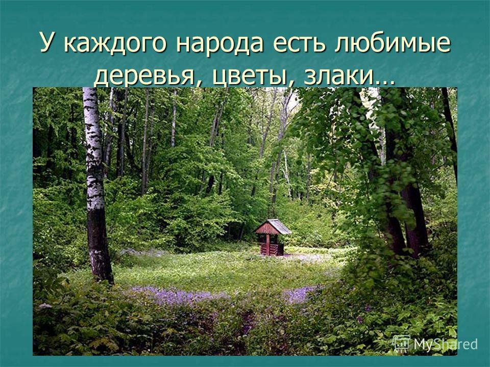 У каждого народа есть любимые деревья, цветы, злаки…