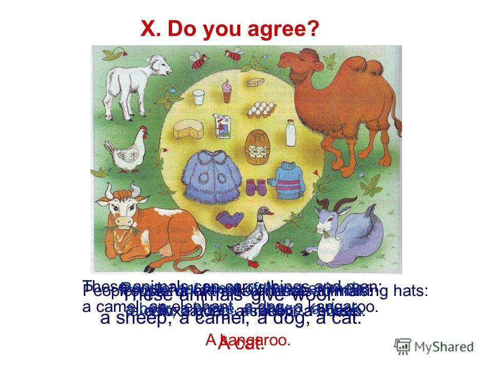 X. Do you agree? These animals give wool: a sheep, a camel, a dog, a cat. A cat. People drink milk of these animals: a cow, a goat, a sheep, a horse. People use fur of these animals to making hats: a fox, a dog, a rabbit, a sheep. These animals can c