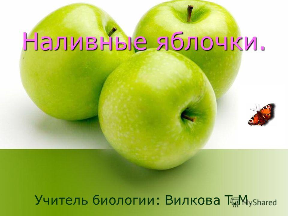 Наливные яблочки. Учитель биологии: Вилкова Т.М.