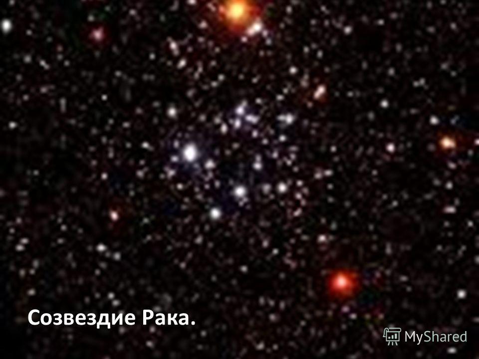Созвездие Рака.