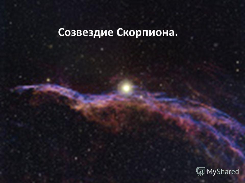 Созвездие Скорпиона.