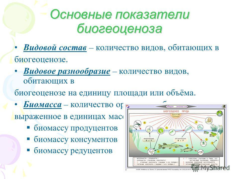 Основные показатели биогеоценоза Видовой состав – количество видов, обитающих в биогеоценозе. Видовое разнообразие – количество видов, обитающих в биогеоценозе на единицу площади или объёма. Биомасса – количество организмов биогеоценоза, выраженное в