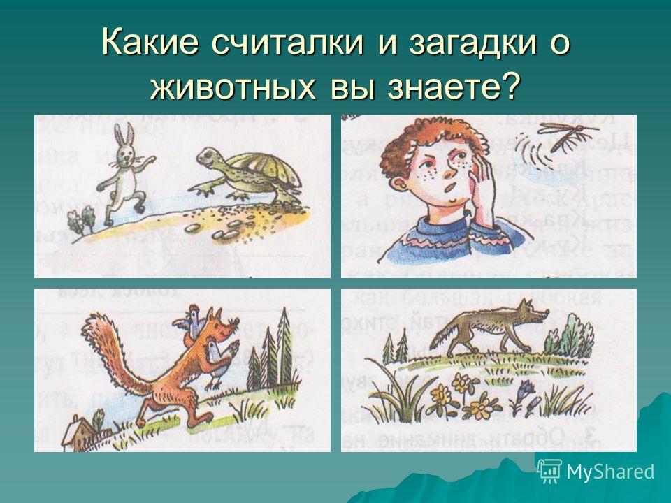 Какие считалки и загадки о животных вы знаете?