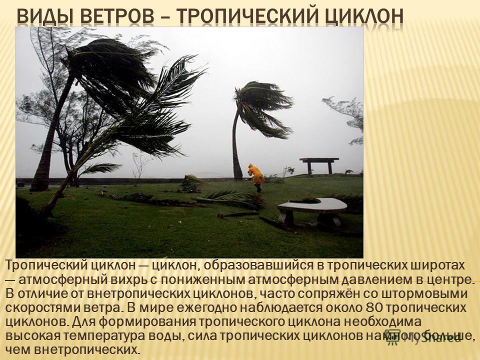 Тропический циклон циклон, образовавшийся в тропических широтах атмосферный вихрь с пониженным атмосферным давлением в центре. В отличие от внетропических циклонов, часто сопряжён со штормовыми скоростями ветра. В мире ежегодно наблюдается около 80 т