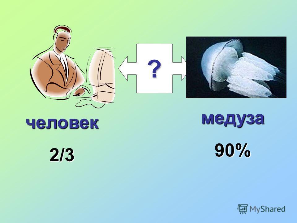 ? медуза90% человек2/3