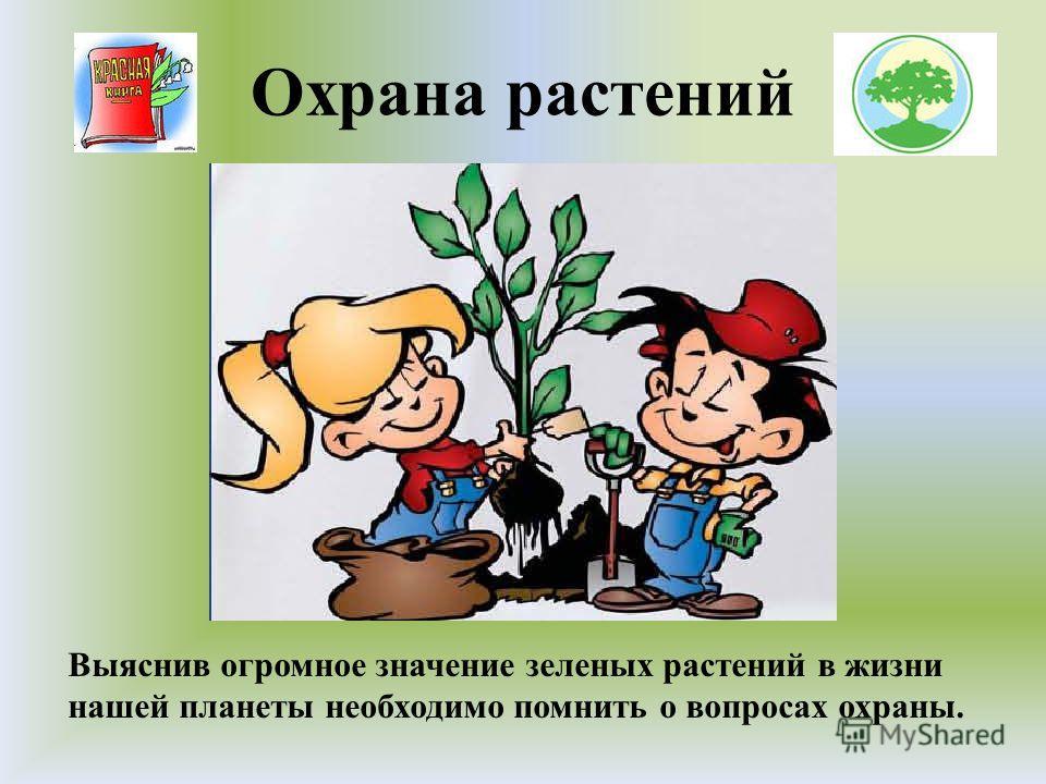 Охрана растений Выяснив огромное значение зеленых растений в жизни нашей планеты необходимо помнить о вопросах охраны.