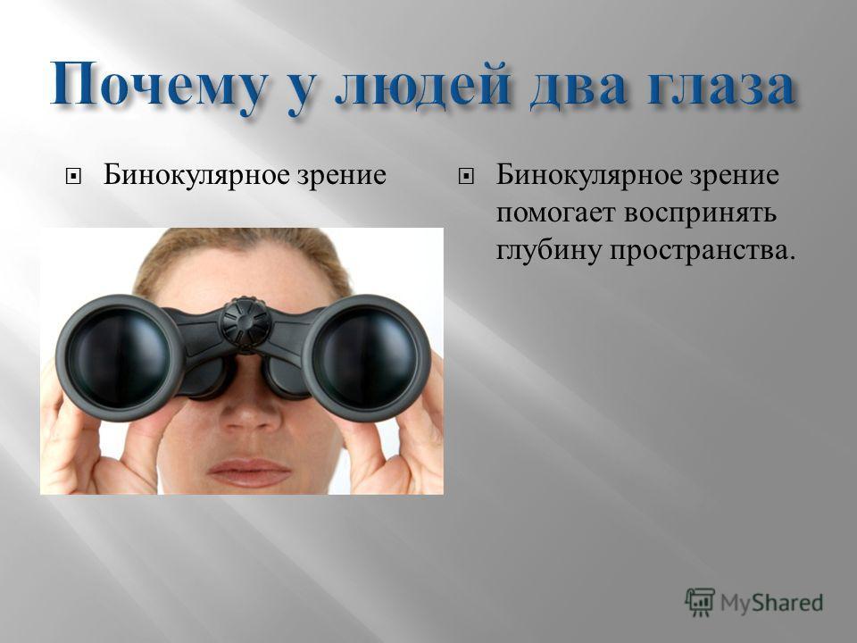 Бинокулярное зрение Бинокулярное зрение помогает воспринять глубину пространства.