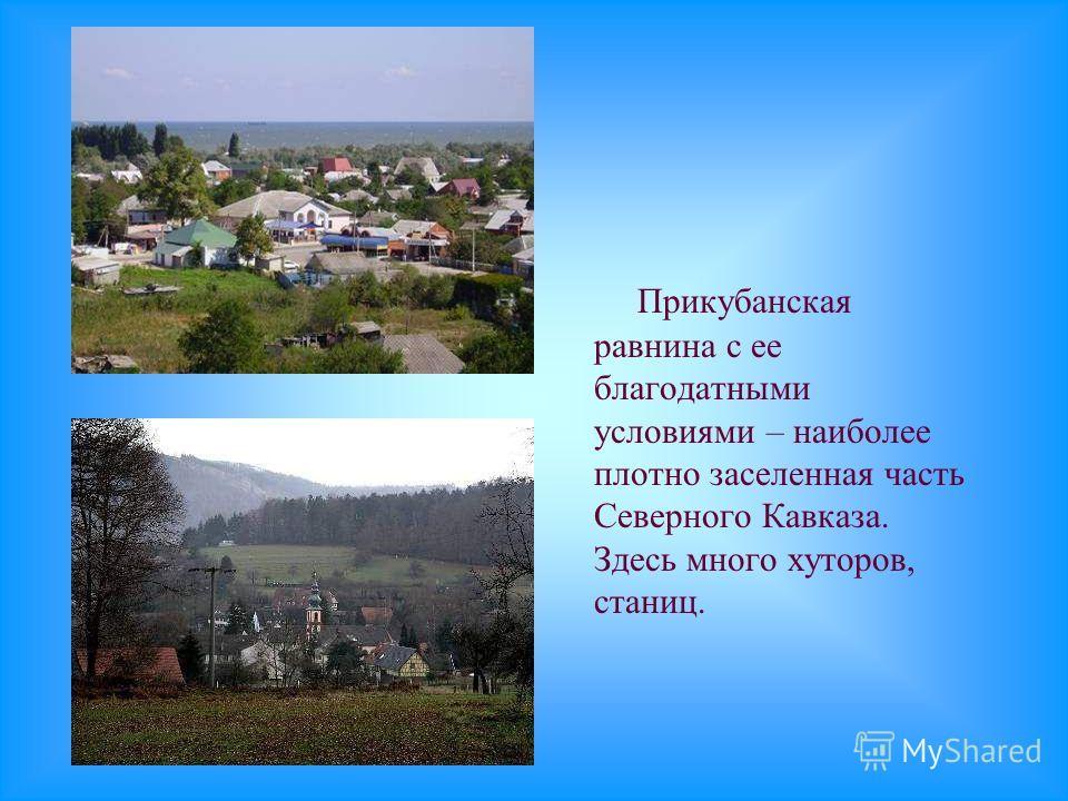 Прикубанская равнина с ее благодатными условиями – наиболее плотно заселенная часть Северного Кавказа. Здесь много хуторов, станиц.