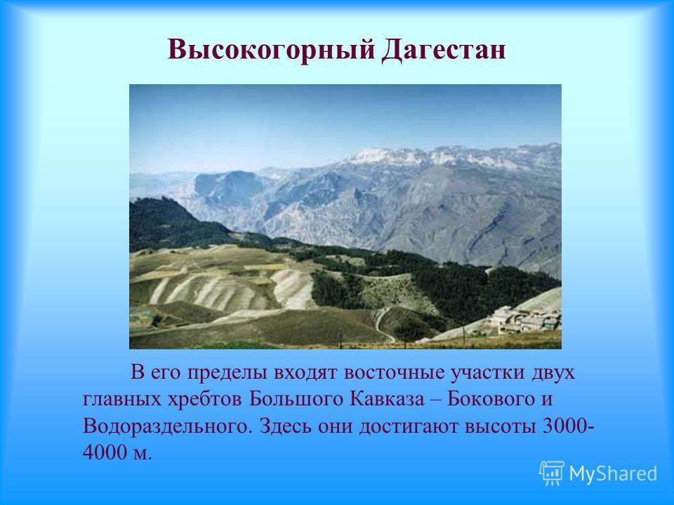 Высокогорный Дагестан В его пределы входят восточные участки двух главных хребтов Большого Кавказа – Бокового и Водораздельного. Здесь они достигают высоты 3000- 4000 м.