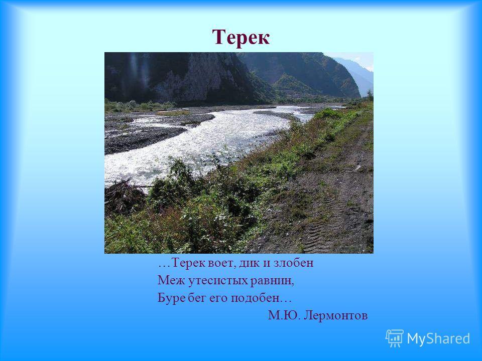 Терек …Терек воет, дик и злобен Меж утесистых равнин, Буре бег его подобен… М.Ю. Лермонтов