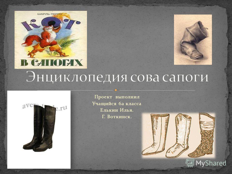 Проект выполнил Учащийся 6а класса Елькин Илья. Г. Воткинск.