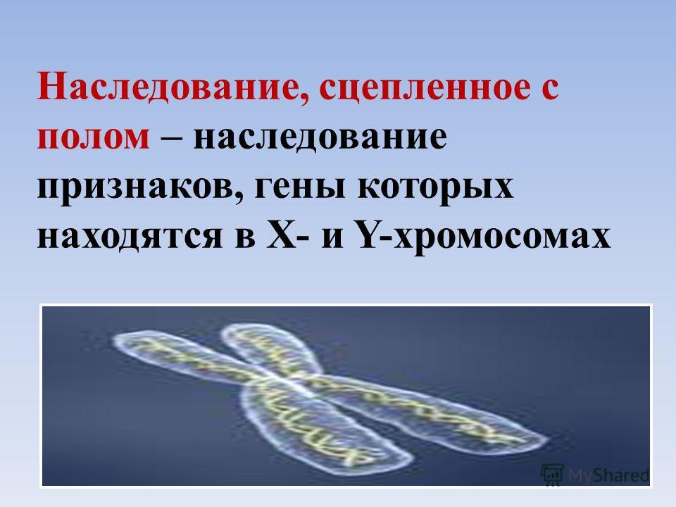 Наследование, сцепленное с полом – наследование признаков, гены которых находятся в Х- и Y-хромосомах