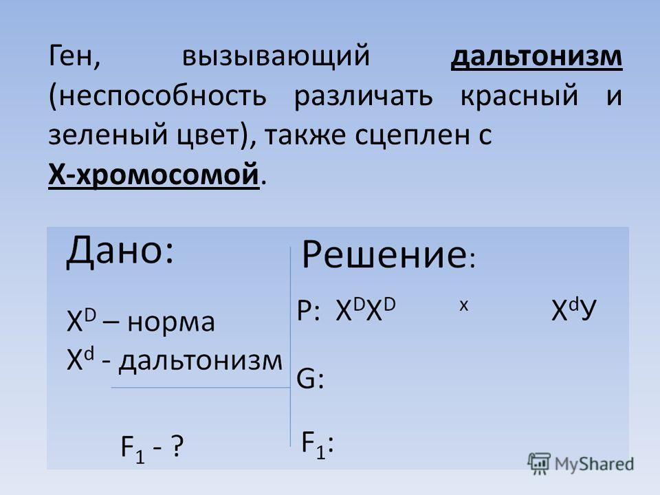 Ген, вызывающий дальтонизм (неспособность различать красный и зеленый цвет), также сцеплен с Х-хромосомой.