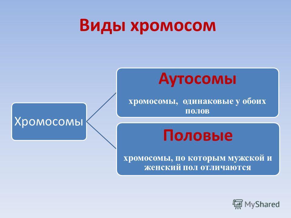 Хромосомы Аутосомы хромосомы, одинаковые у обоих полов Половые хромосомы, по которым мужской и женский пол отличаются Виды хромосом