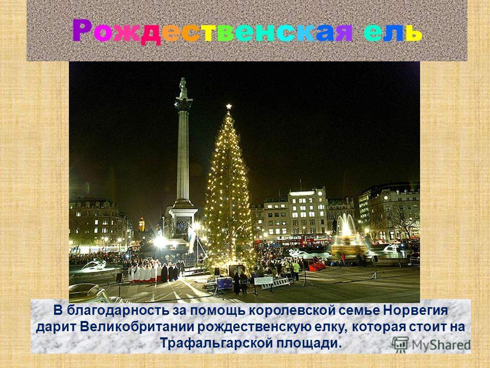 Рождественская ель В благодарность за помощь королевской семье Норвегия дарит Великобритании рождественскую елку, которая стоит на Трафальгарской площади.