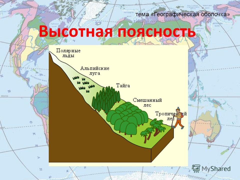 Высотная поясность тема «Географическая оболочка»