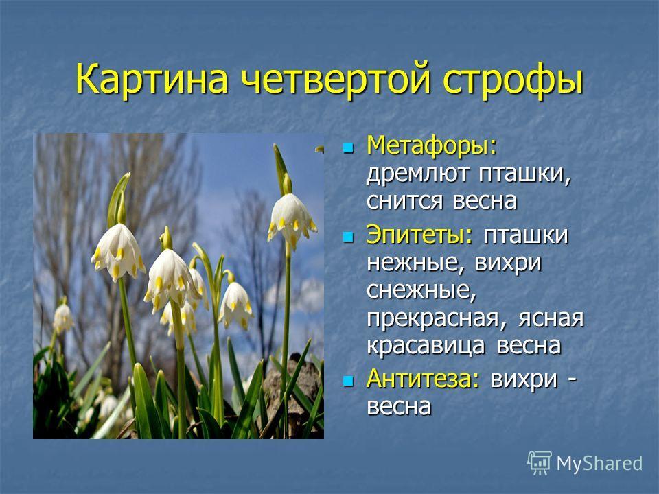 Картина четвертой строфы Метафоры: дремлют пташки, снится весна Метафоры: дремлют пташки, снится весна Эпитеты: пташки нежные, вихри снежные, прекрасная, ясная красавица весна Эпитеты: пташки нежные, вихри снежные, прекрасная, ясная красавица весна А