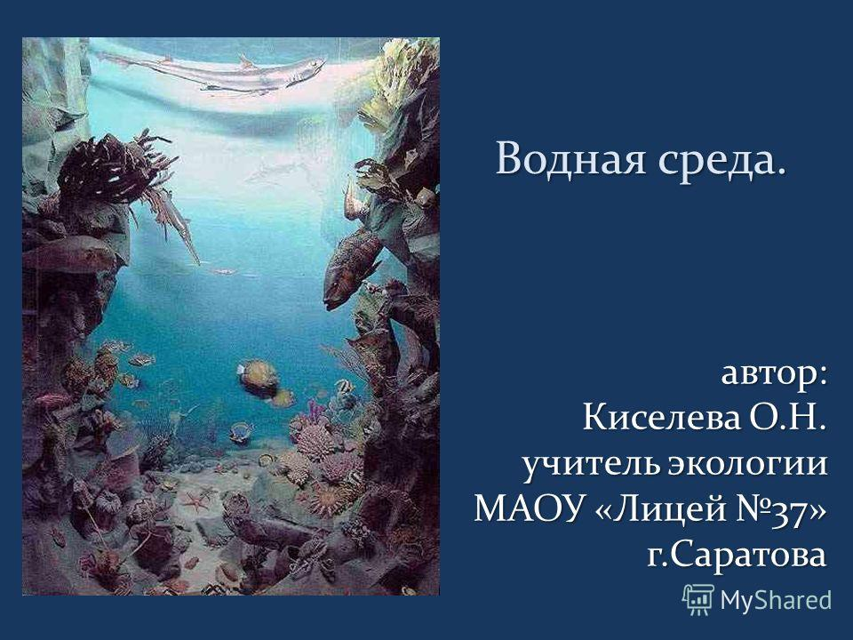 Водная среда. Водная среда. автор: Киселева О.Н. Киселева О.Н. учитель экологии МАОУ «Лицей 37» г.Саратова