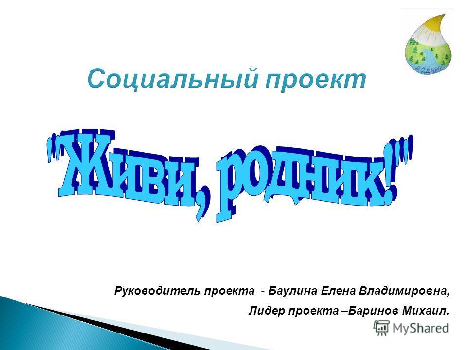 Руководитель проекта - Баулина Елена Владимировна, Лидер проекта –Баринов Михаил.