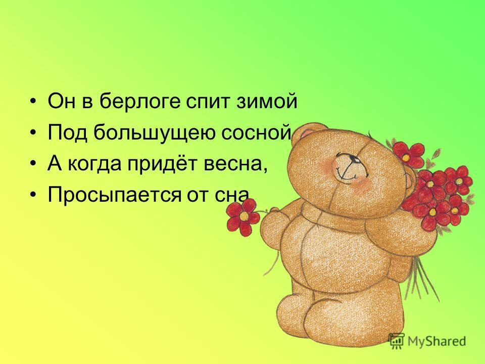 Он в берлоге спит зимой Под большущею сосной, А когда придёт весна, Просыпается от сна.