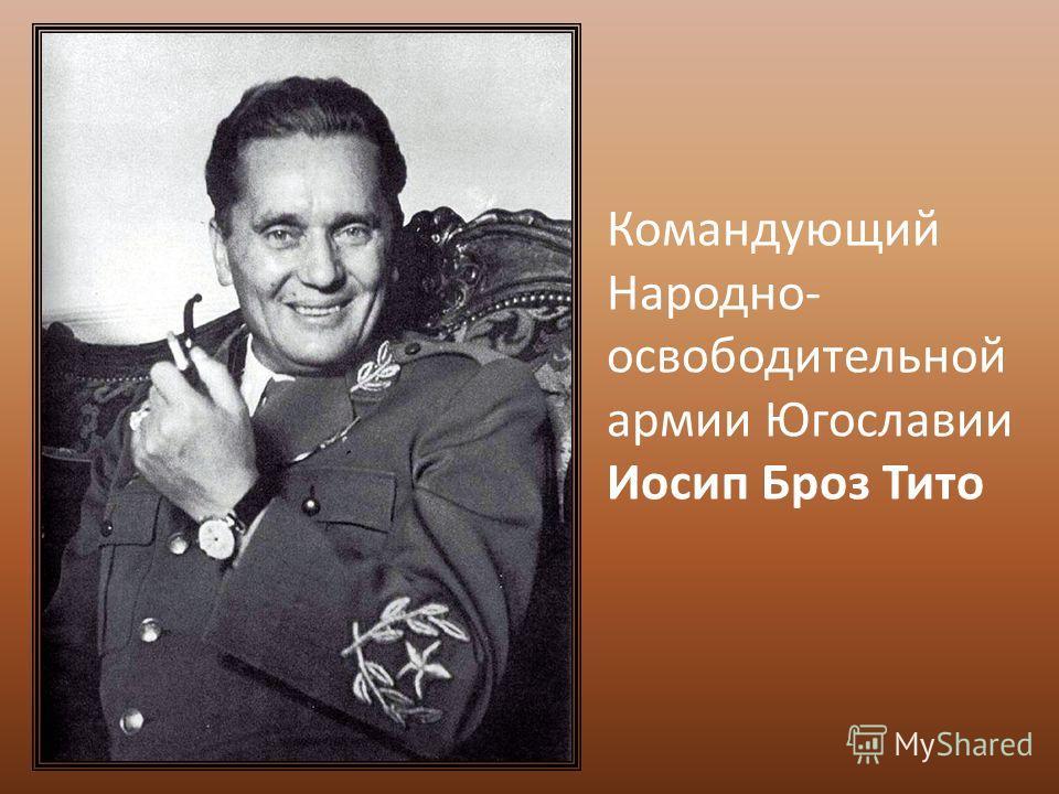 Командующий Народно- освободительной армии Югославии Иосип Броз Тито