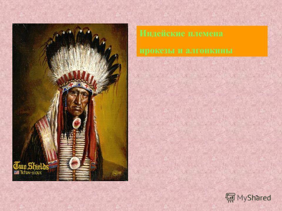 7 Индейские племена ирокезы и алгонкины