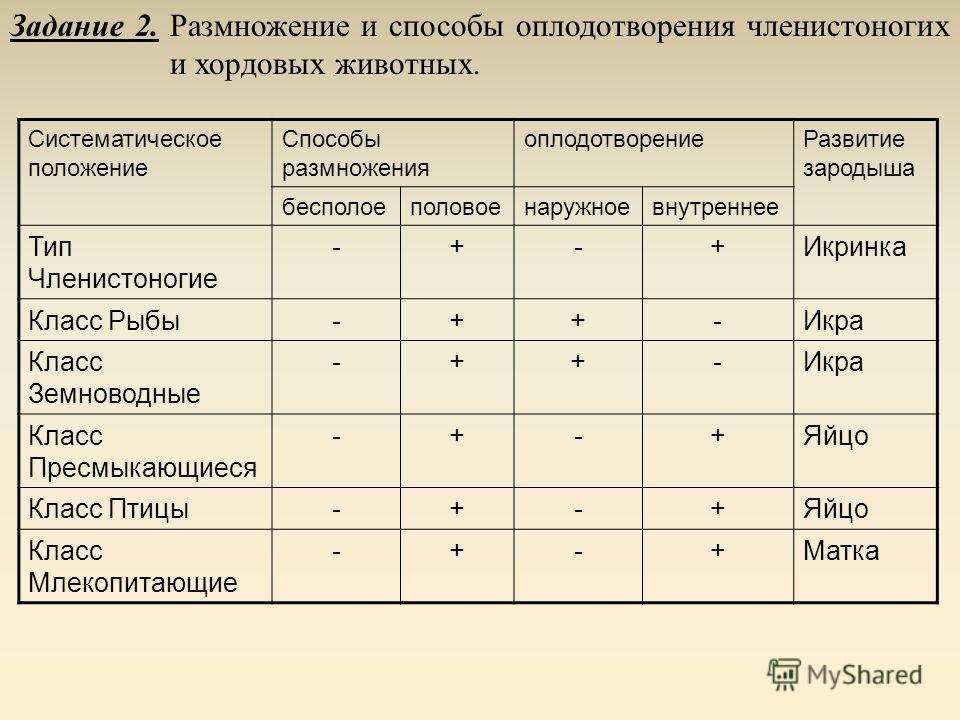 Задание 1 Способы размножения простейших, кишечнополостных, червей, моллюсков. Систематическое положение Способы размножения бесполоеполовое Тип простейшие++ Тип кишечнополостные++ Тип черви++ Тип моллюски-+