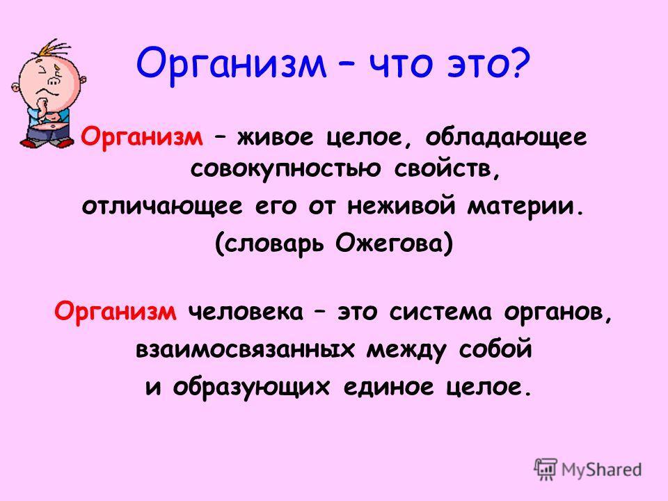 Организм – что это? Организм – живое целое, обладающее совокупностью свойств, отличающее его от неживой материи. (словарь Ожегова) Организм человека – это система органов, взаимосвязанных между собой и образующих единое целое.