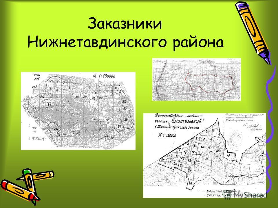 Заказники Нижнетавдинского района