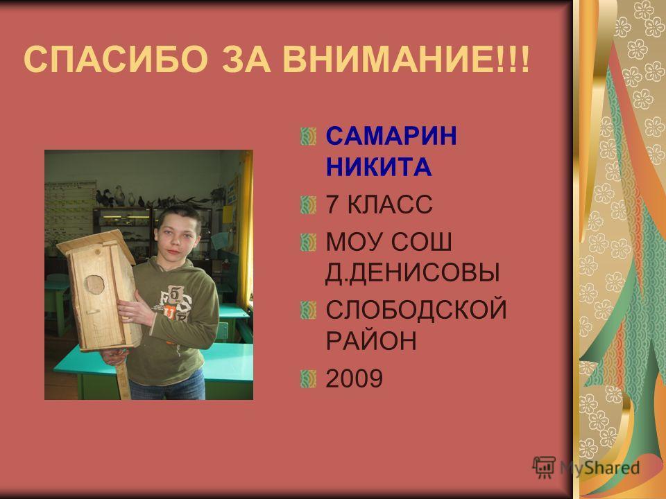СПАСИБО ЗА ВНИМАНИЕ!!! САМАРИН НИКИТА 7 КЛАСС МОУ СОШ Д.ДЕНИСОВЫ СЛОБОДСКОЙ РАЙОН 2009