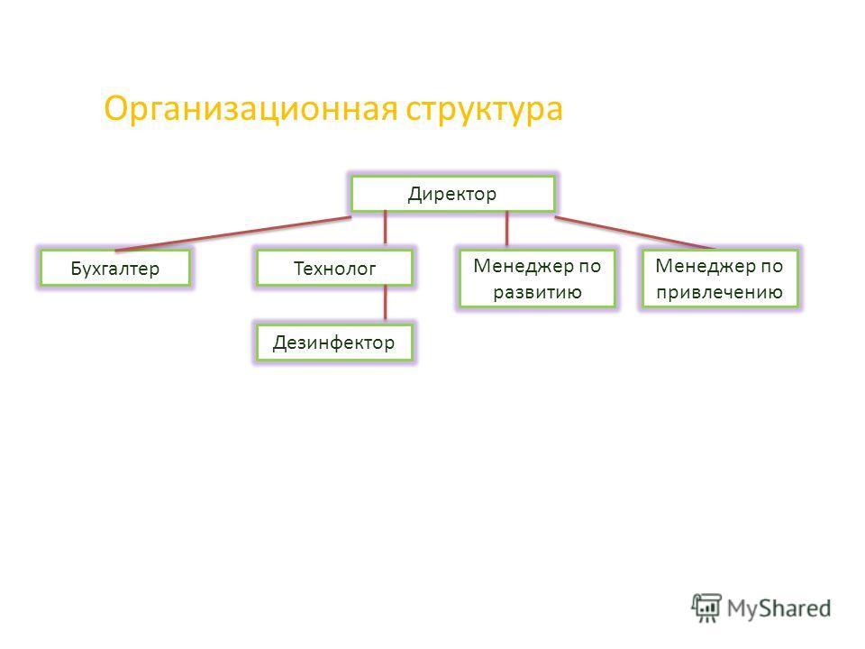 Организационная структура Директор Бухгалтер Дезинфектор Технолог Менеджер по развитию Менеджер по привлечению